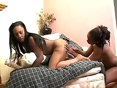 Beautiful black lesbians lick each other